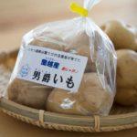 potato_MayQueen_5kg